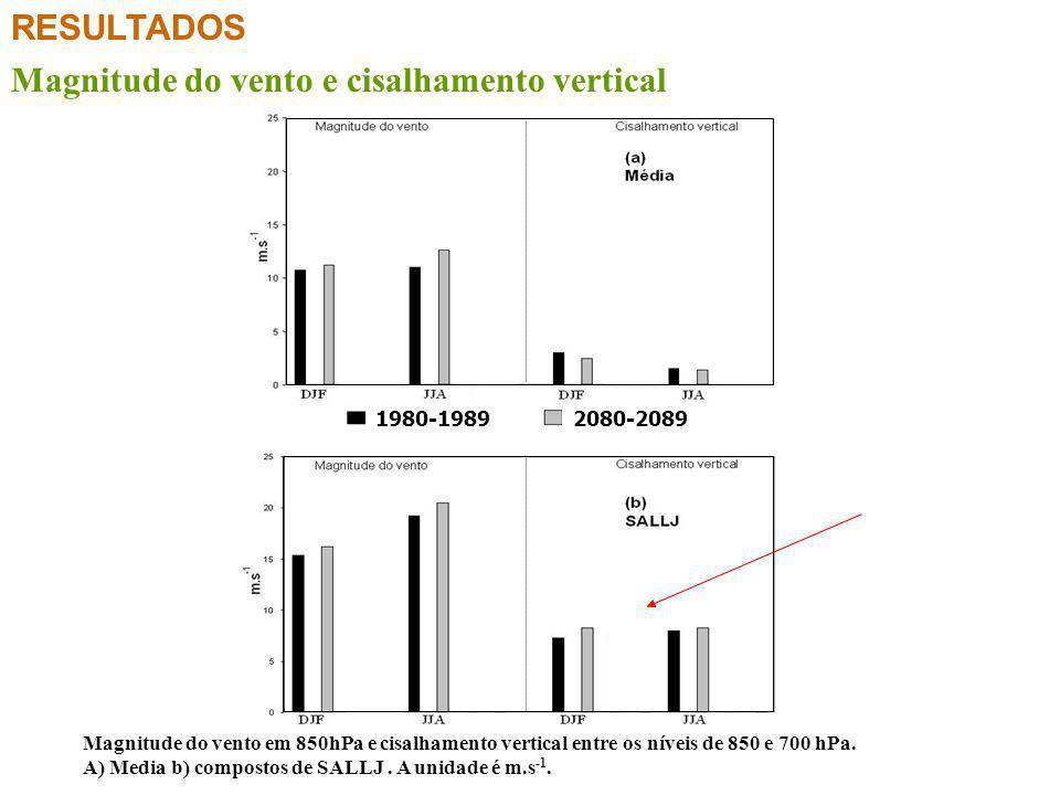 RESULTADOS Magnitude do vento e cisalhamento vertical 1980-19892080-2089 Magnitude do vento em 850hPa e cisalhamento vertical entre os níveis de 850 e