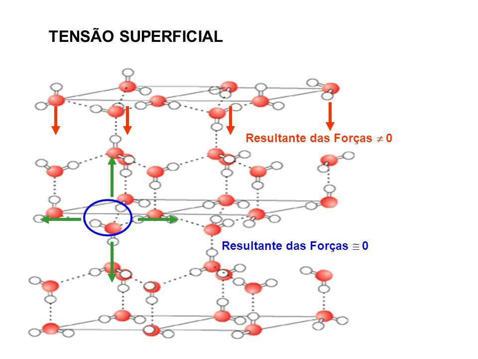 Resultante das Forças 0 TENSÃO SUPERFICIAL