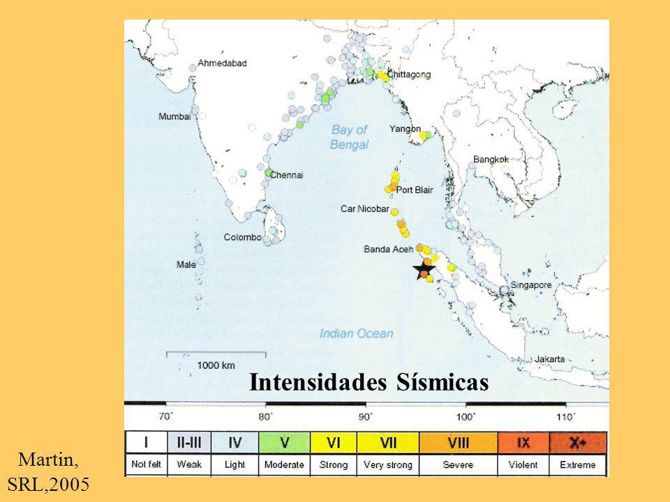Intensidades Sísmicas Martin, SRL,2005