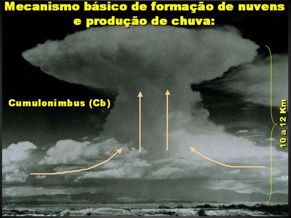 Carvalho et al., 2004