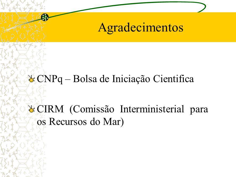 Agradecimentos CNPq – Bolsa de Iniciação Cientifica CIRM (Comissão Interministerial para os Recursos do Mar)