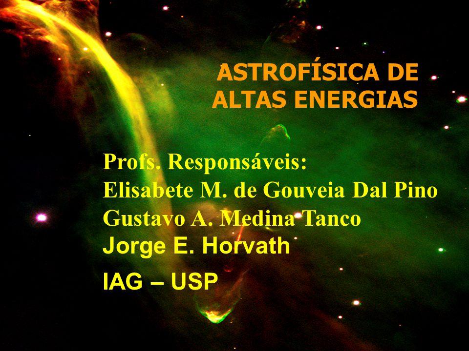 ASTROFÍSICA DE ALTAS ENERGIAS Profs. Responsáveis: Elisabete M. de Gouveia Dal Pino Gustavo A. Medina Tanco Jorge E. Horvath IAG – USP