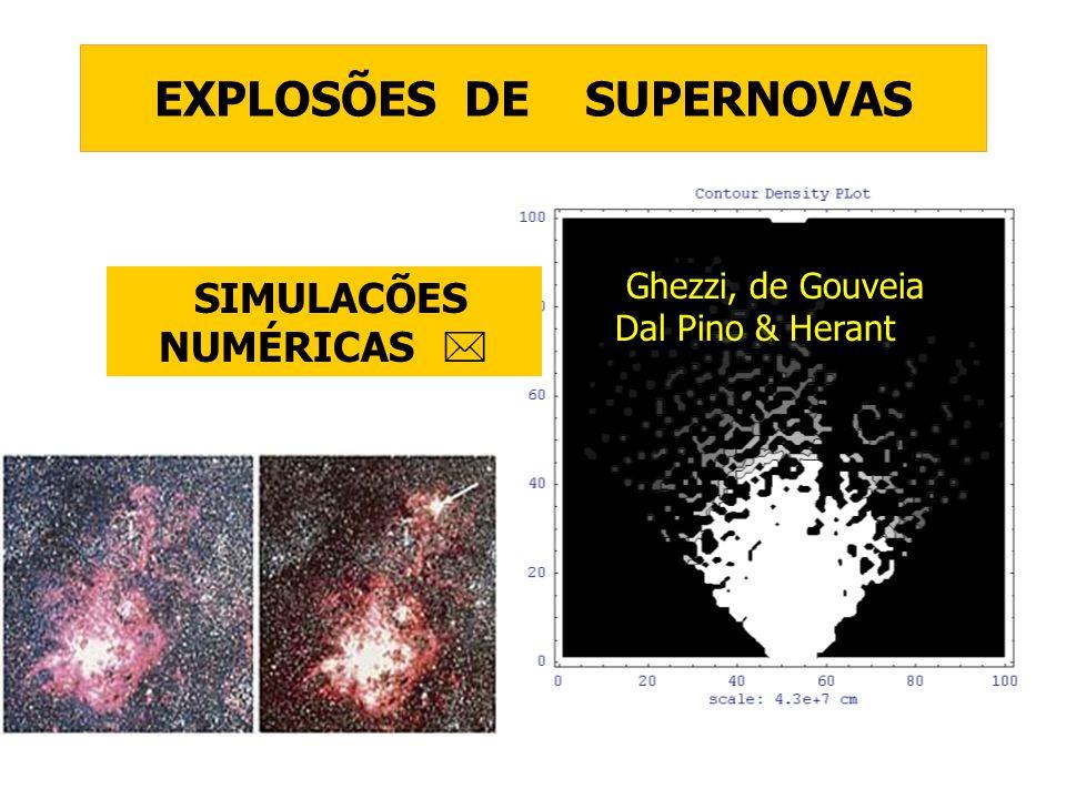 EXPLOSÕES DE SUPERNOVAS SIMULACÕES NUMÉRICAS Ghezzi, de Gouveia Dal Pino & Herant