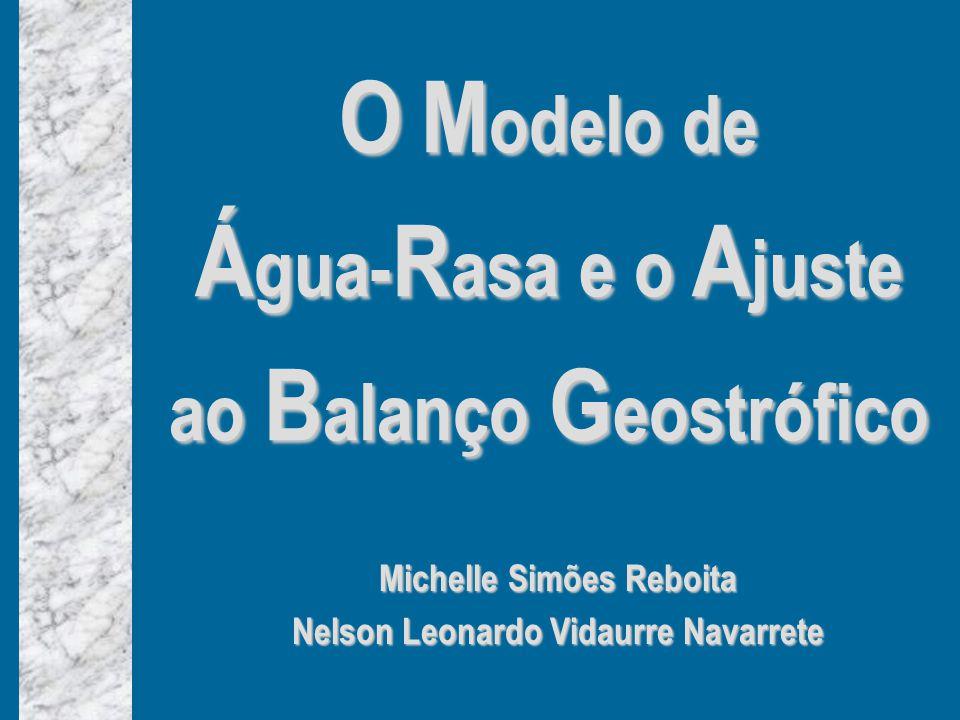 O M odelo de Á gua- R asa e o A juste ao B alanço G eostrófico Michelle Simões Reboita Nelson Leonardo Vidaurre Navarrete