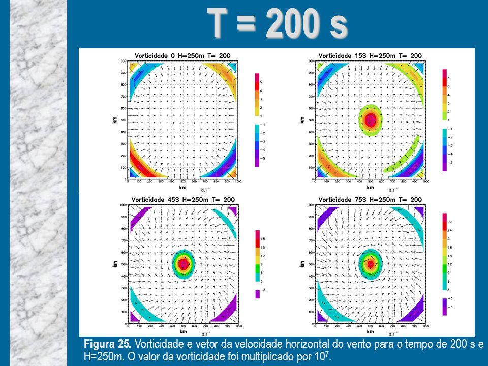 T = 200 s Figura 25.