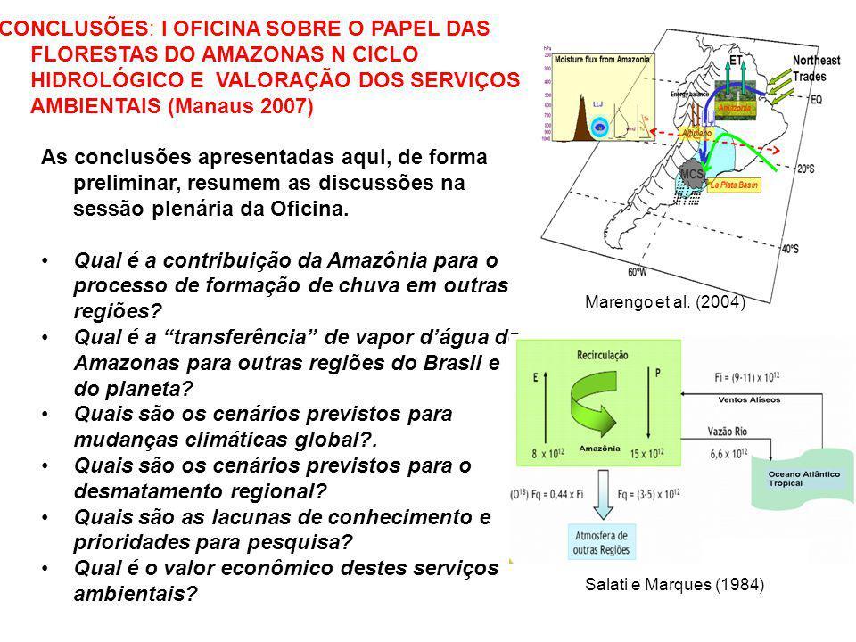 CONCLUSÕES: I OFICINA SOBRE O PAPEL DAS FLORESTAS DO AMAZONAS N CICLO HIDROLÓGICO E VALORAÇÃO DOS SERVIÇOS AMBIENTAIS (Manaus 2007) As conclusões apre