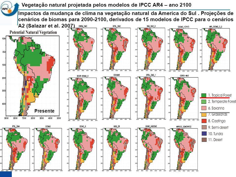 Impactos da mudança de clima na vegetação natural da America do Sul. Projeções de cenários de biomas para 2090-2100, derivados de 15 modelos de IPCC p