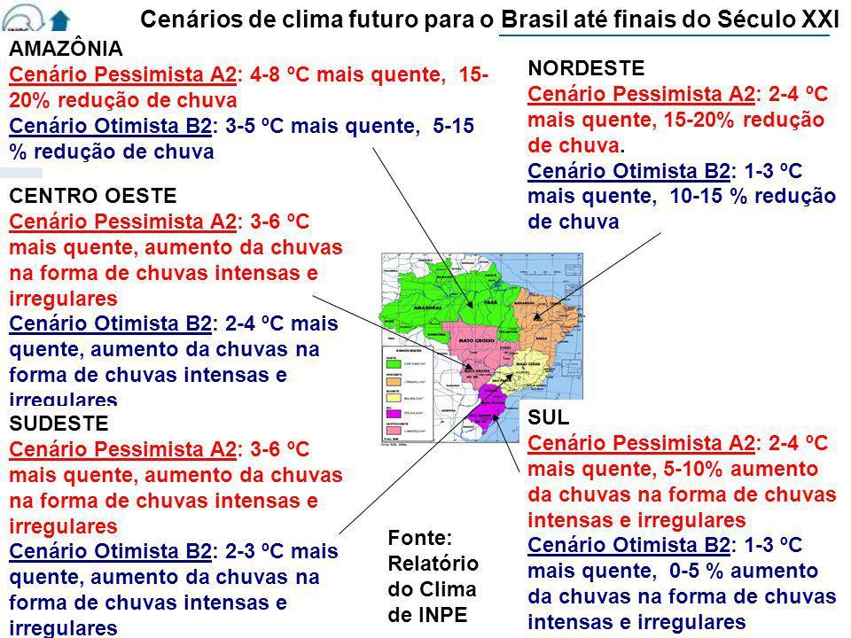 AMAZÔNIA Cenário Pessimista A2: 4-8 ºC mais quente, 15- 20% redução de chuva Cenário Otimista B2: 3-5 ºC mais quente, 5-15 % redução de chuva CENTRO O