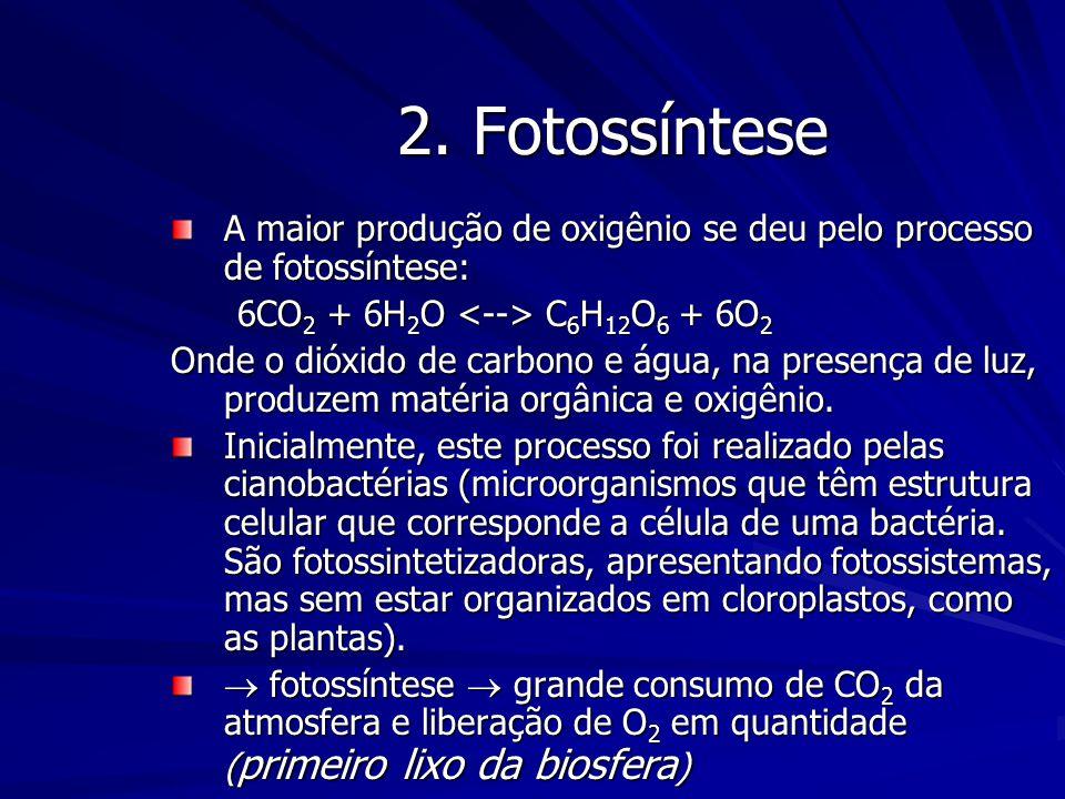 2. Fotossíntese A maior produção de oxigênio se deu pelo processo de fotossíntese: 6CO 2 + 6H 2 O C 6 H 12 O 6 + 6O 2 6CO 2 + 6H 2 O C 6 H 12 O 6 + 6O