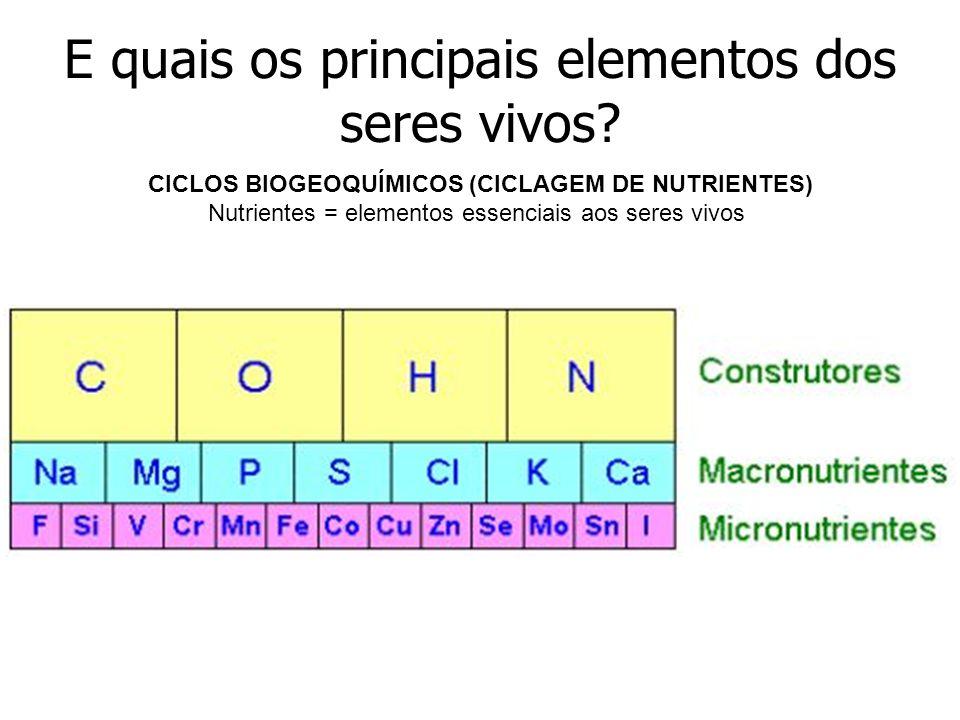 E quais os principais elementos dos seres vivos.