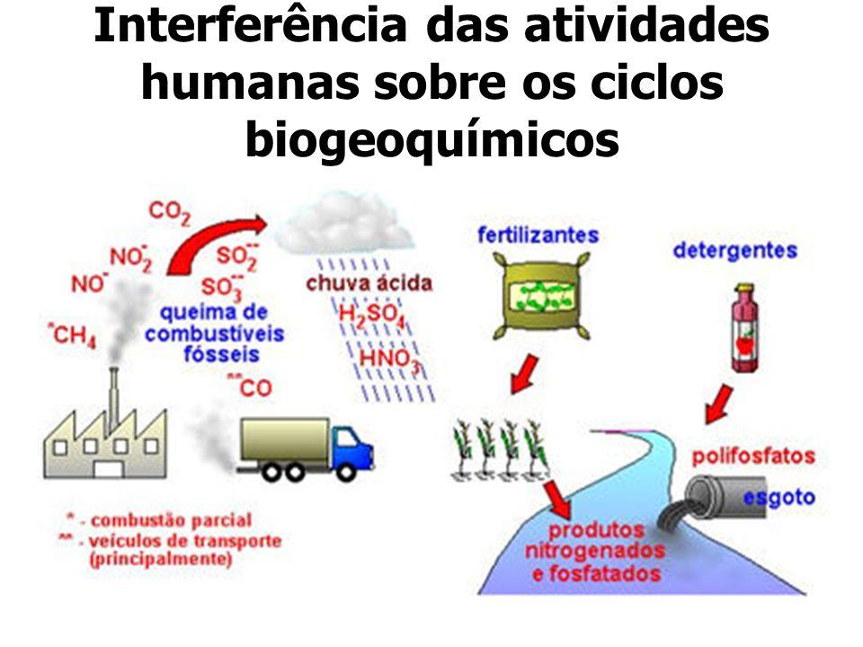 Interferência das atividades humanas sobre os ciclos biogeoquímicos