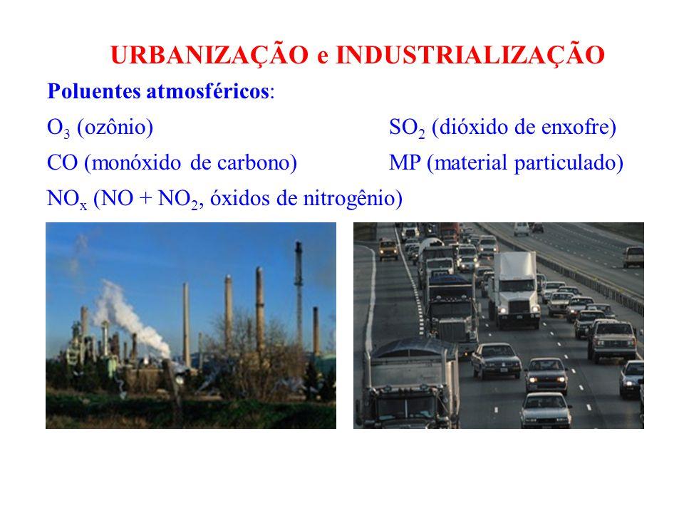 Poluentes atmosféricos: O 3 (ozônio) SO 2 (dióxido de enxofre) CO (monóxido de carbono) MP (material particulado) NO x (NO + NO 2, óxidos de nitrogênio) URBANIZAÇÃO e INDUSTRIALIZAÇÃO