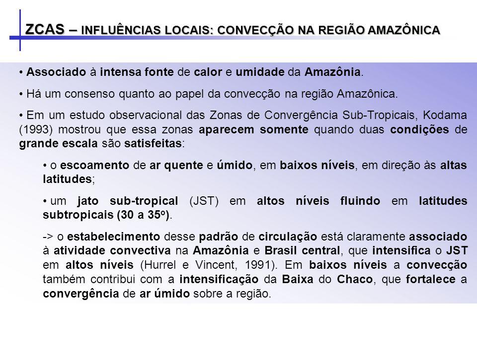 ZCAS – REFERÊNCIAS FERREIRA, N.J.; SANCHES, M.; SILVA DIAS, M.