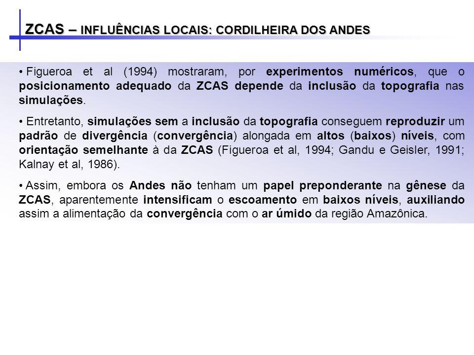 Figueroa et al (1994) mostraram, por experimentos numéricos, que o posicionamento adequado da ZCAS depende da inclusão da topografia nas simulações. E