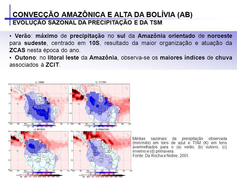 Verão: máximo de precipitação no sul da Amazônia orientado de noroeste para sudeste, centrado em 10S, resultado da maior organização e atuação da ZCAS