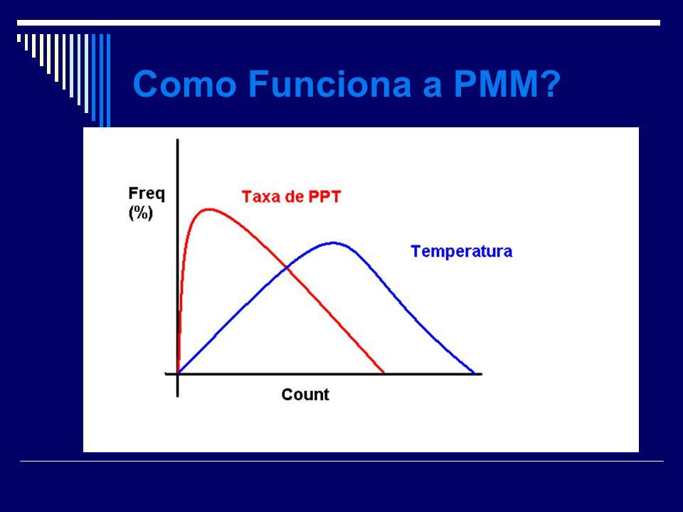 Como Funciona a PMM?