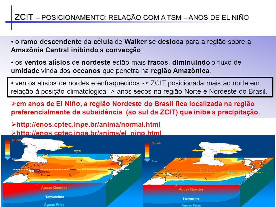ZCIT – POSICIONAMENTO: RELAÇÃO COM A TSM – ANOS DE EL NIÑO o ramo descendente da célula de Walker se desloca para a região sobre a Amazônia Central in
