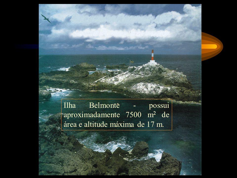 Ilha Belmonte - possui aproximadamente 7500 m 2 de área e altitude máxima de 17 m.