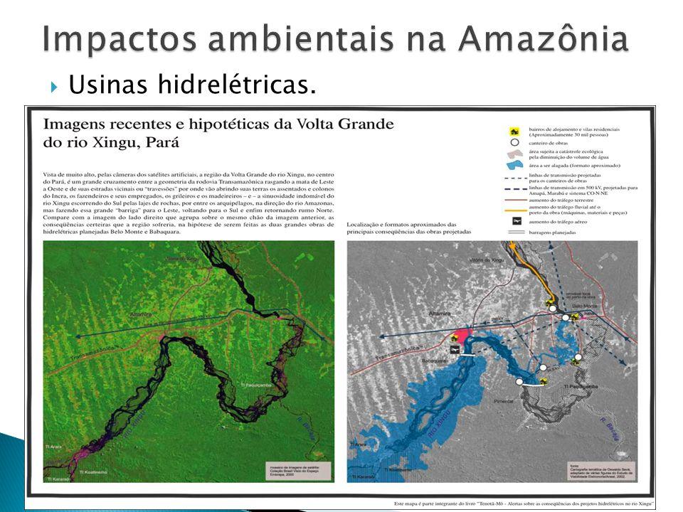 Extração de madeira; Crescimento demográfico; Extrativismo mineral; Construção de rodovias e ferrovias; Avanço da agropecuária;