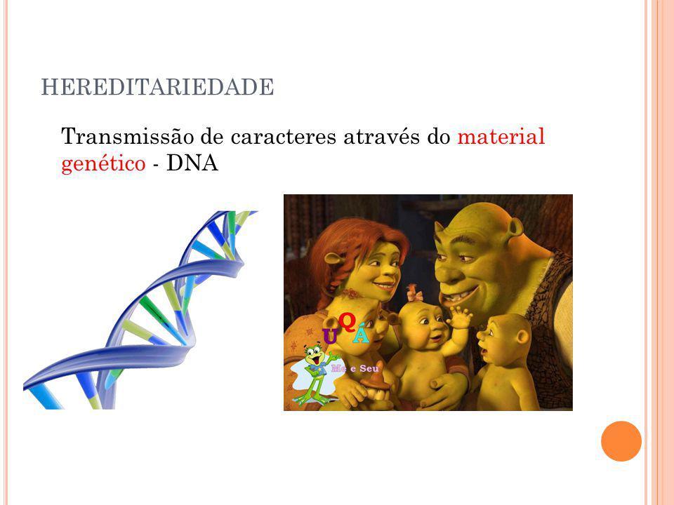 HEREDITARIEDADE Transmissão de caracteres através do material genético - DNA
