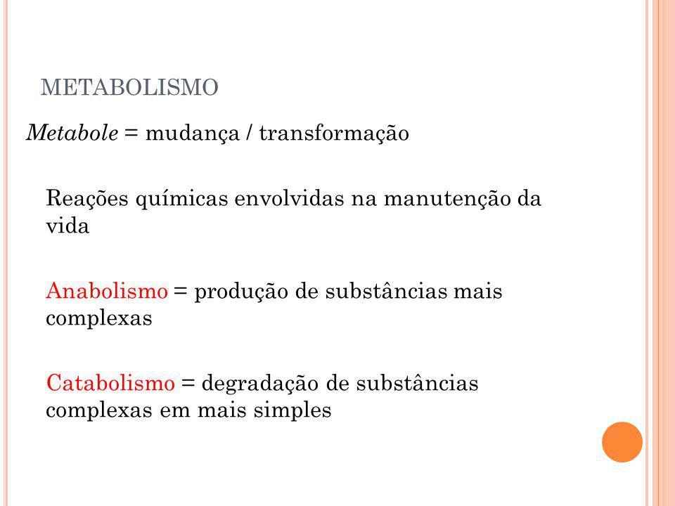 METABOLISMO Metabole = mudança / transformação Reações químicas envolvidas na manutenção da vida Anabolismo = produção de substâncias mais complexas C