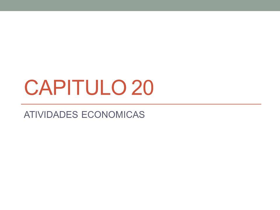 CAPITULO 20 ATIVIDADES ECONOMICAS