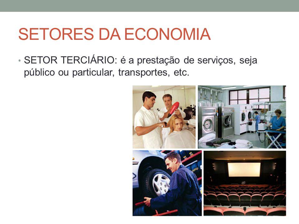 SETORES DA ECONOMIA SETOR TERCIÁRIO: é a prestação de serviços, seja público ou particular, transportes, etc.