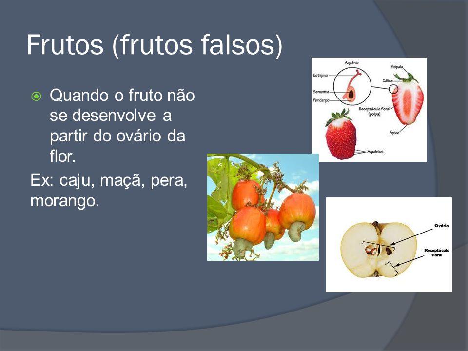 Frutos sem semente Algumas vezes o fruto se forma de flores que não foram fecundadas.
