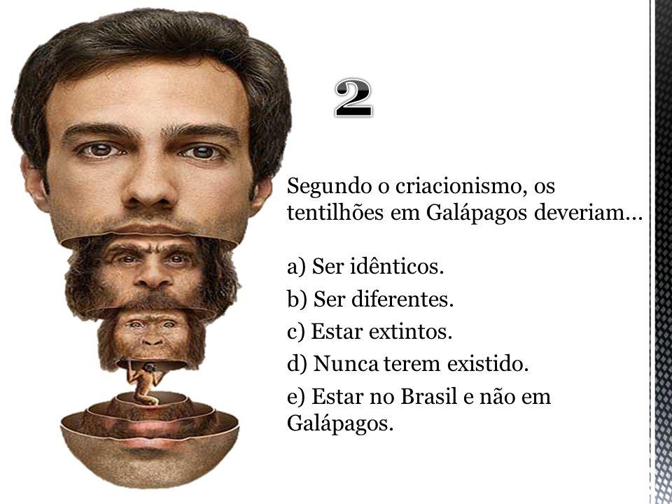 Segundo o criacionismo, os tentilhões em Galápagos deveriam... a) Ser idênticos. b) Ser diferentes. c) Estar extintos. d) Nunca terem existido. e) Est