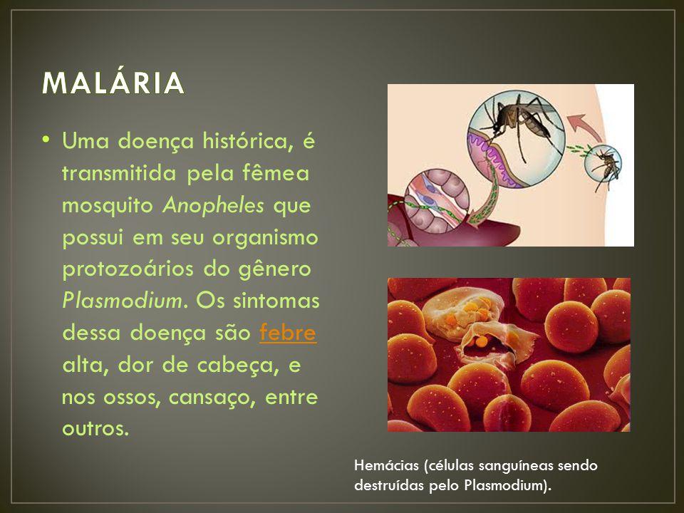 Uma doença histórica, é transmitida pela fêmea mosquito Anopheles que possui em seu organismo protozoários do gênero Plasmodium.