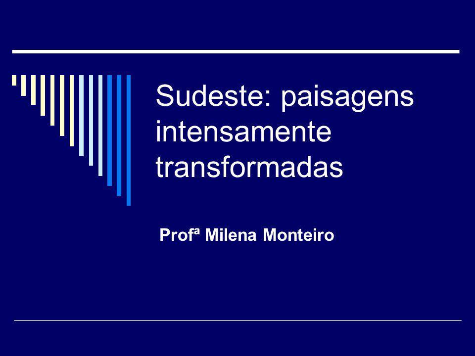 Sudeste: paisagens intensamente transformadas Profª Milena Monteiro