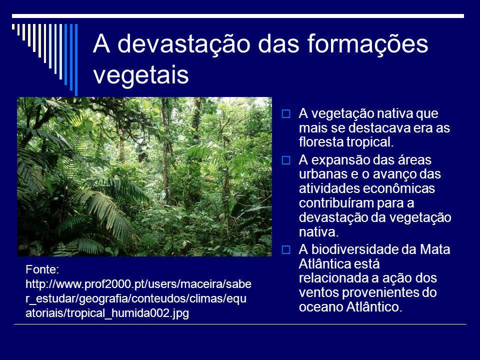 A devastação das formações vegetais A vegetação nativa que mais se destacava era as floresta tropical. A expansão das áreas urbanas e o avanço das ati