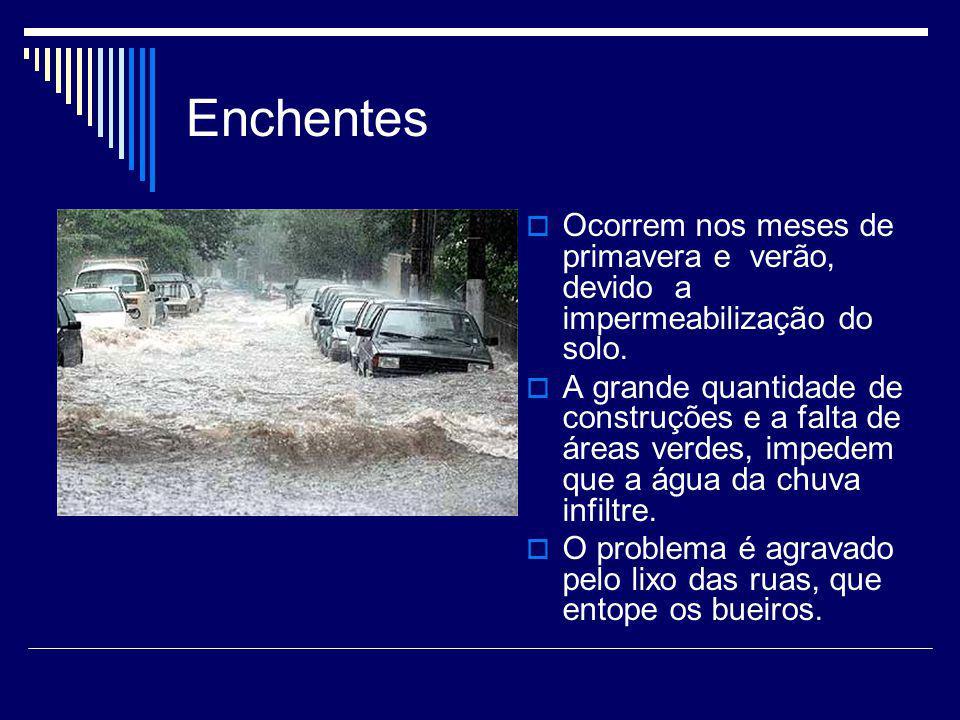 Enchentes Ocorrem nos meses de primavera e verão, devido a impermeabilização do solo. A grande quantidade de construções e a falta de áreas verdes, im