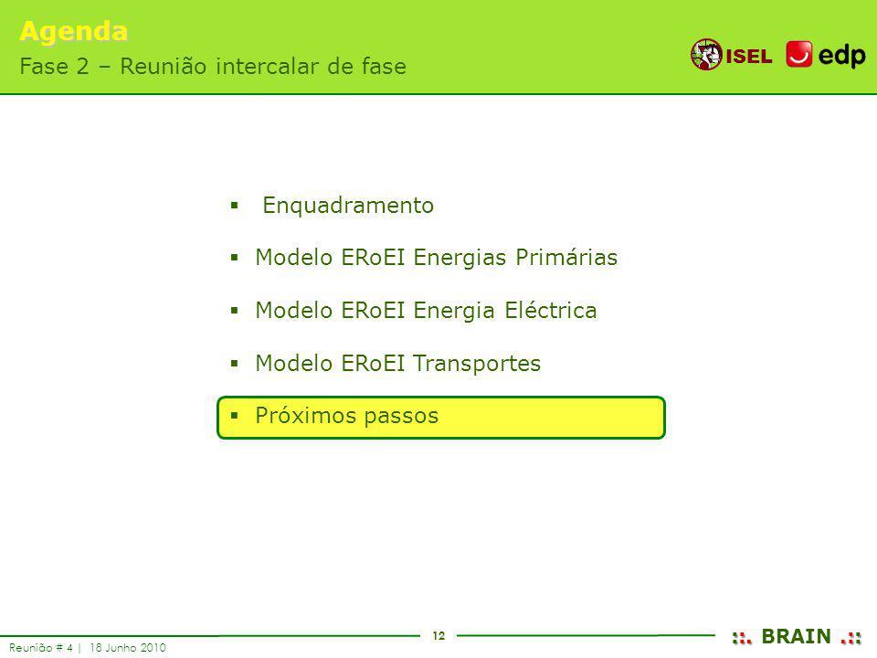 12 ISEL ::..:: ::. BRAIN.:: Reunião # 4 | 18 Junho 2010 Enquadramento Modelo ERoEI Energias Primárias Modelo ERoEI Energia Eléctrica Modelo ERoEI Tran