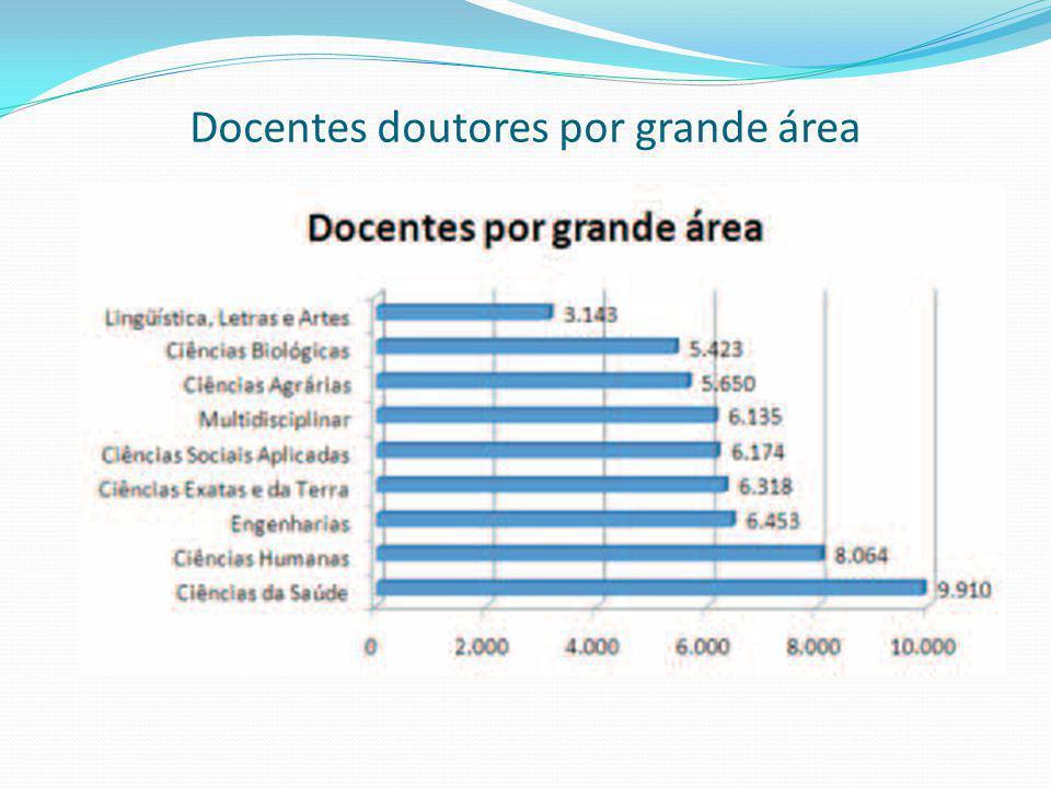 Docentes doutores por grande área