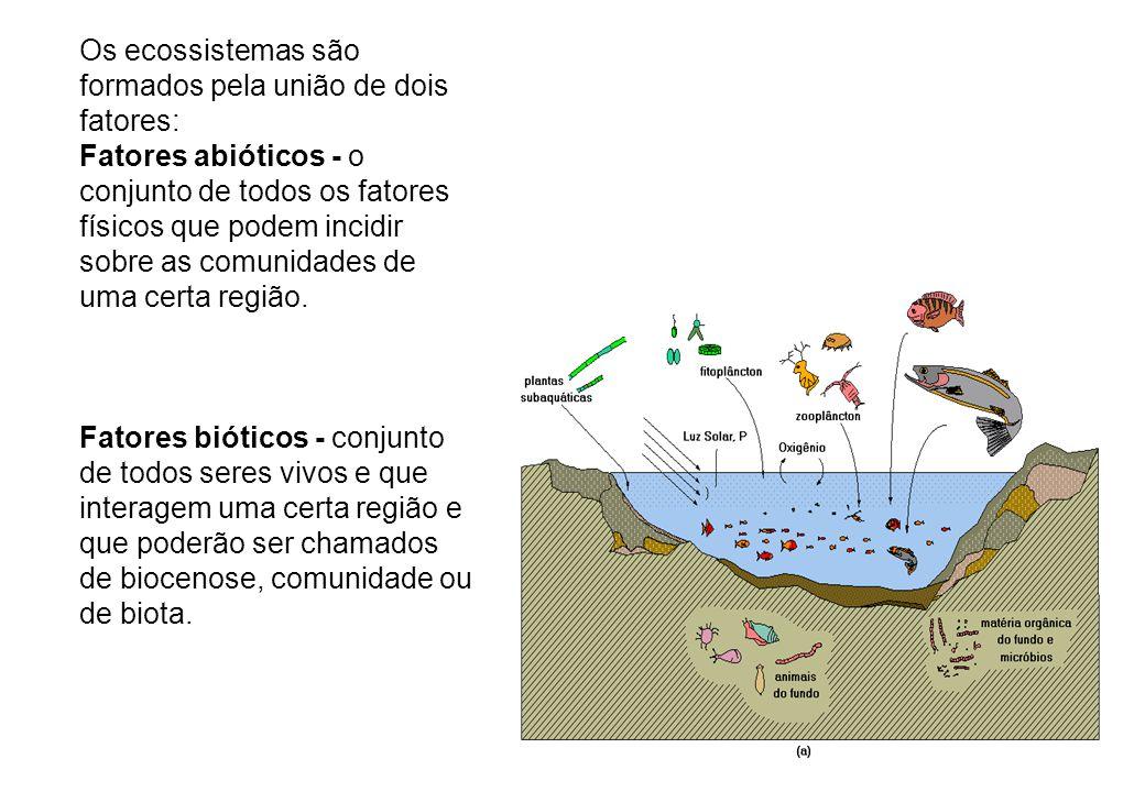Os ecossistemas são formados pela união de dois fatores: Fatores abióticos - o conjunto de todos os fatores físicos que podem incidir sobre as comunid