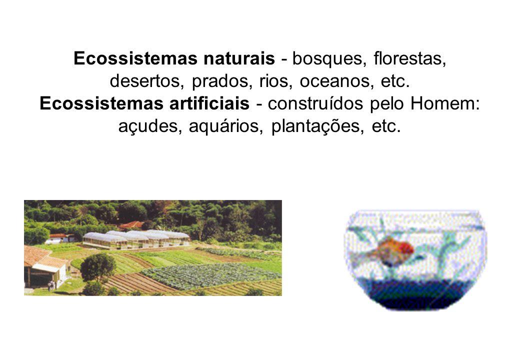 Ecossistemas naturais - bosques, florestas, desertos, prados, rios, oceanos, etc. Ecossistemas artificiais - construídos pelo Homem: açudes, aquários,