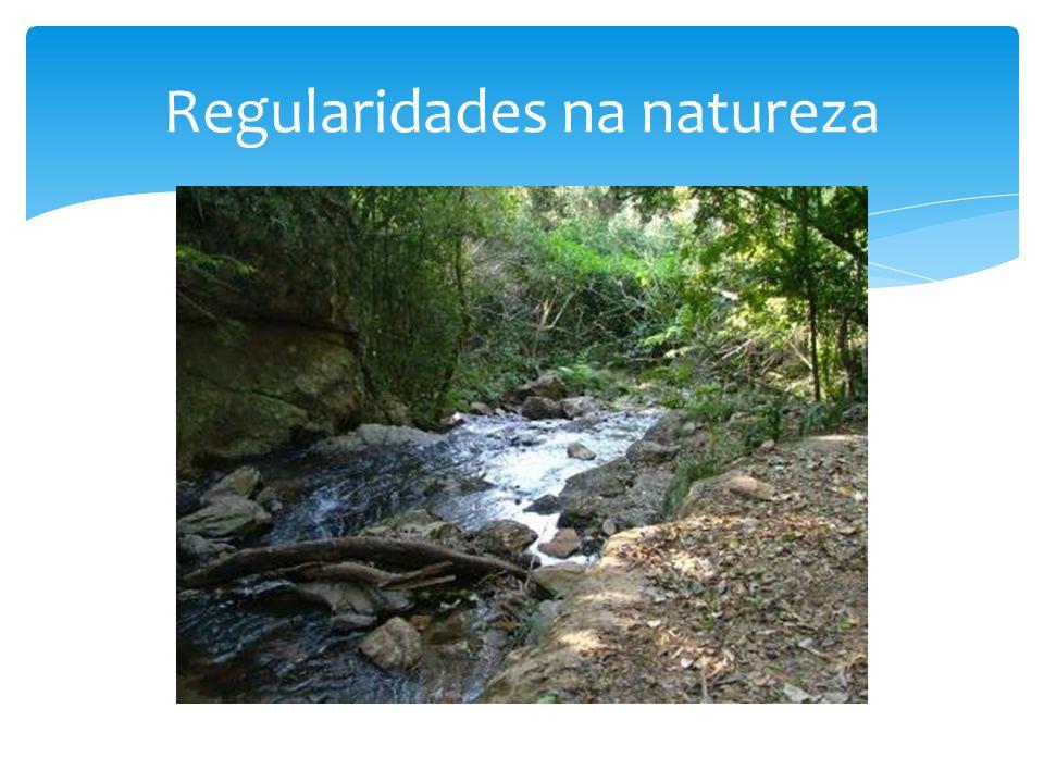 Regularidades na natureza