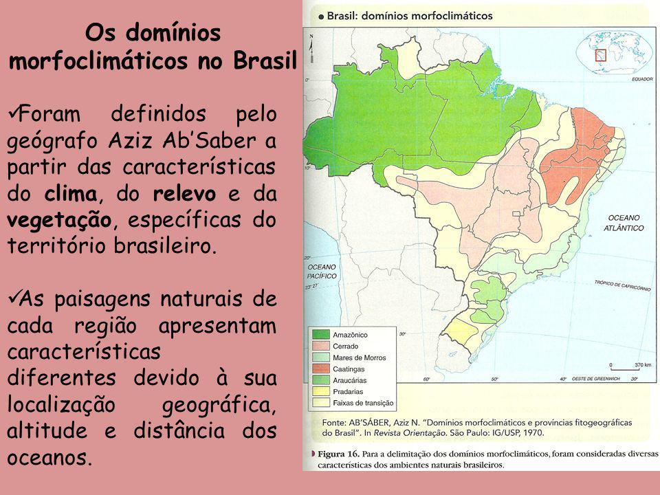 Os domínios morfoclimáticos no Brasil Foram definidos pelo geógrafo Aziz AbSaber a partir das características do clima, do relevo e da vegetação, espe