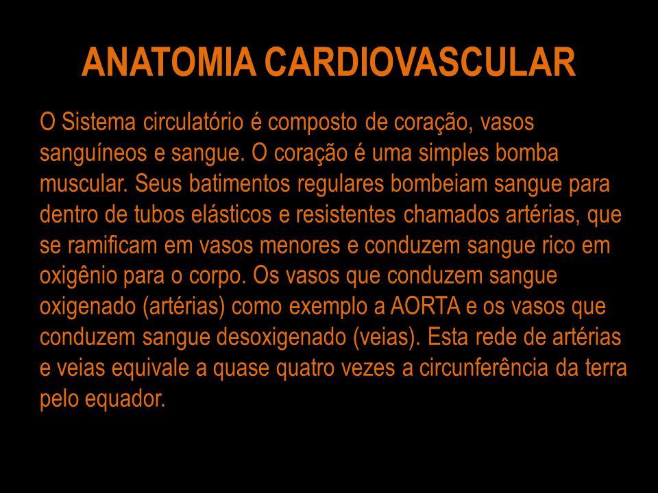 ANATOMIA CARDIOVASCULAR O Sistema circulatório é composto de coração, vasos sanguíneos e sangue. O coração é uma simples bomba muscular. Seus batiment