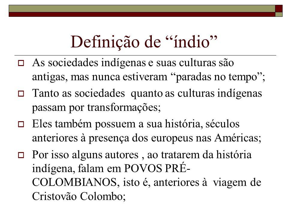 Definição de índio As sociedades indígenas e suas culturas são antigas, mas nunca estiveram paradas no tempo; Tanto as sociedades quanto as culturas i