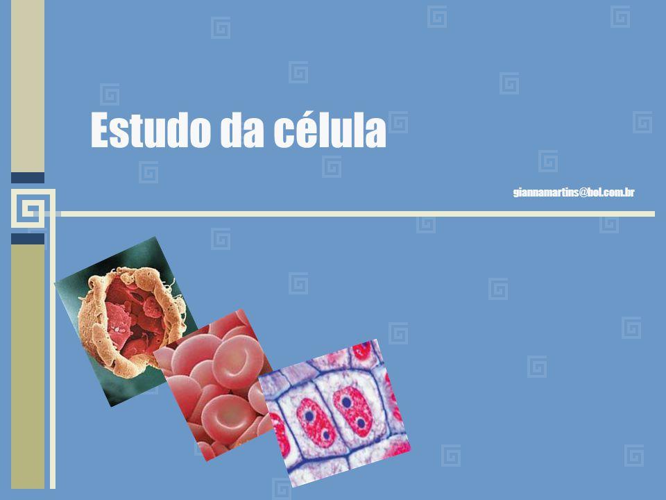 Estudo da célula giannamartins@bol.com.br
