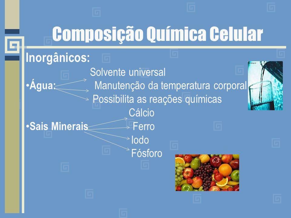 Composição Química Celular Inorgânicos: Solvente universal Água: Manutenção da temperatura corporal Possibilita as reações químicas Cálcio Sais Minera