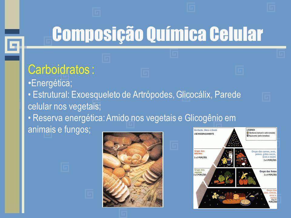 Lipídios : Energética; Estrutural: Exoesqueleto de Artrópodes, Glicocálix, Parede celular nos vegetais; Reserva energética: Amido nos vegetais e Glicogênio em animais e fungos;