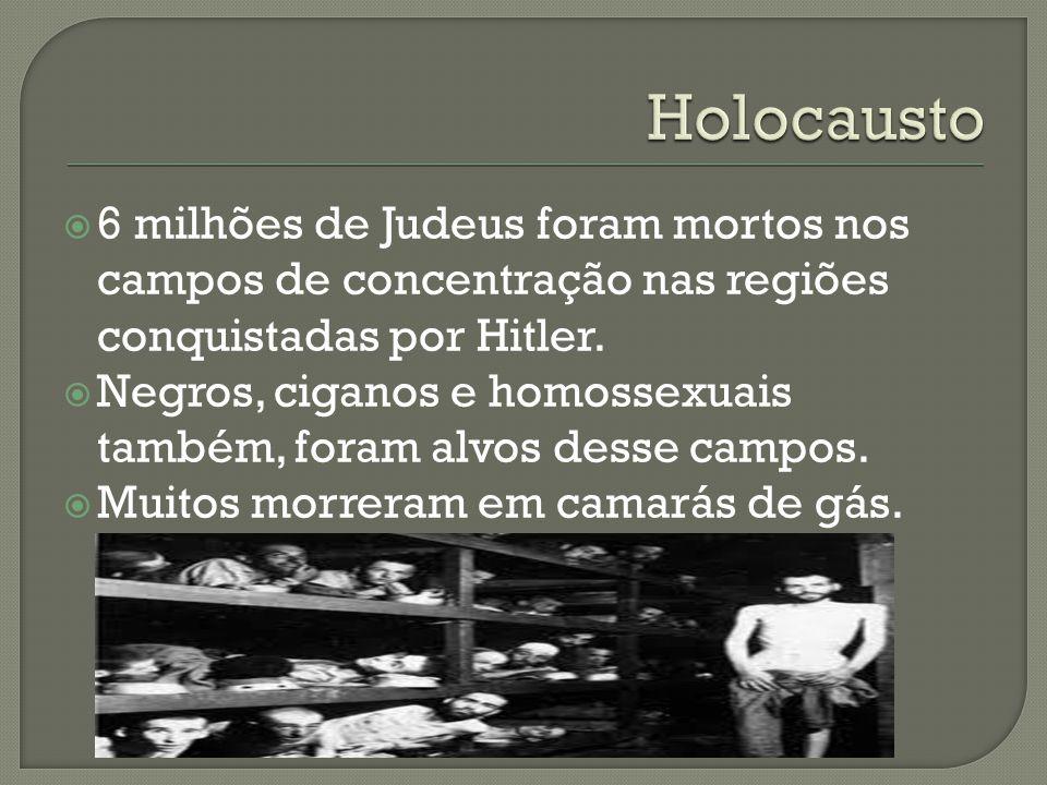 6 milhões de Judeus foram mortos nos campos de concentração nas regiões conquistadas por Hitler. Negros, ciganos e homossexuais também, foram alvos de