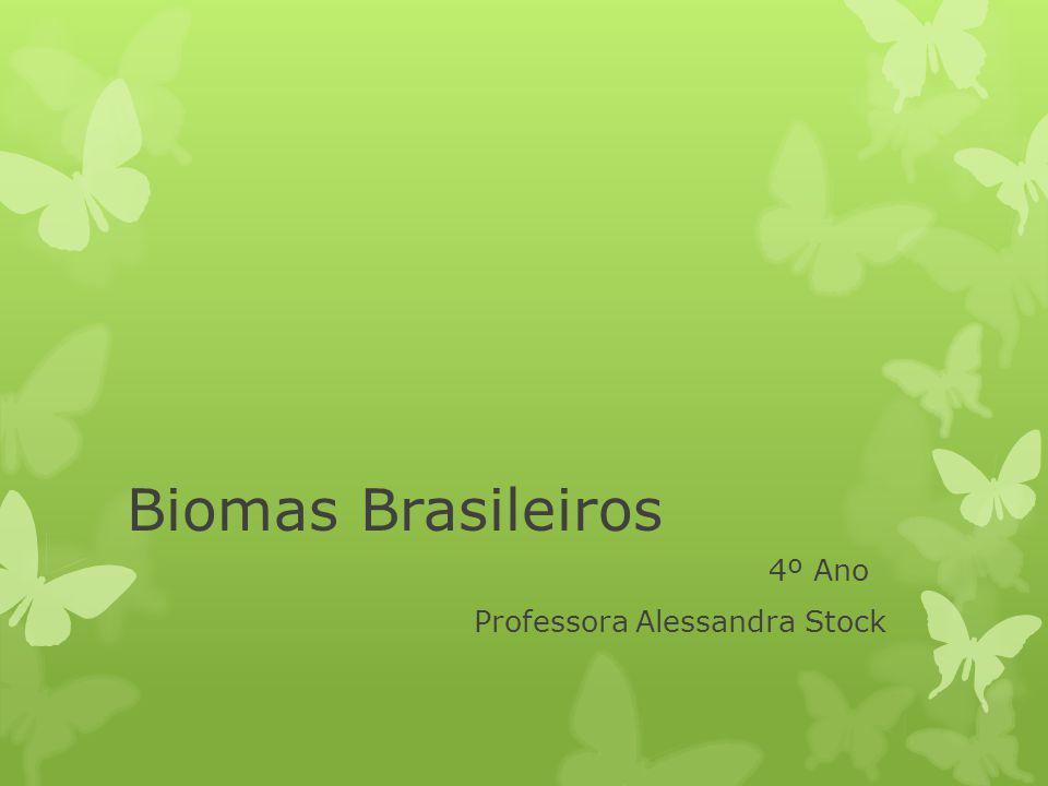 Biomas Brasileiros 4º Ano Professora Alessandra Stock