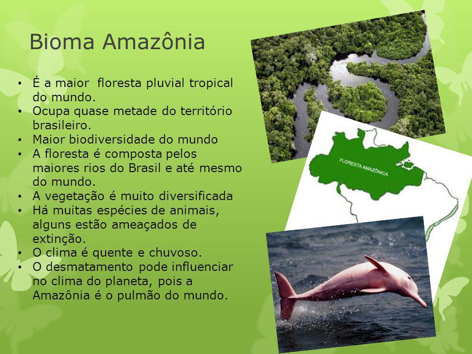 Bioma Amazônia É a maior floresta pluvial tropical do mundo. Ocupa quase metade do território brasileiro. Maior biodiversidade do mundo A floresta é c