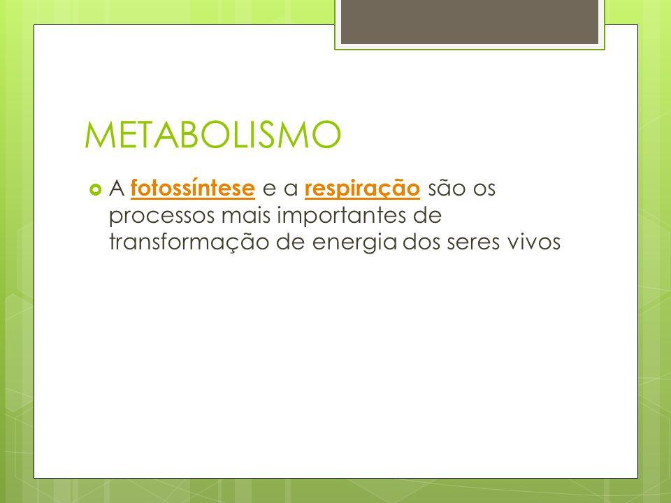METABOLISMO A fotossíntese e a respiração são os processos mais importantes de transformação de energia dos seres vivos fotossíntese respiração