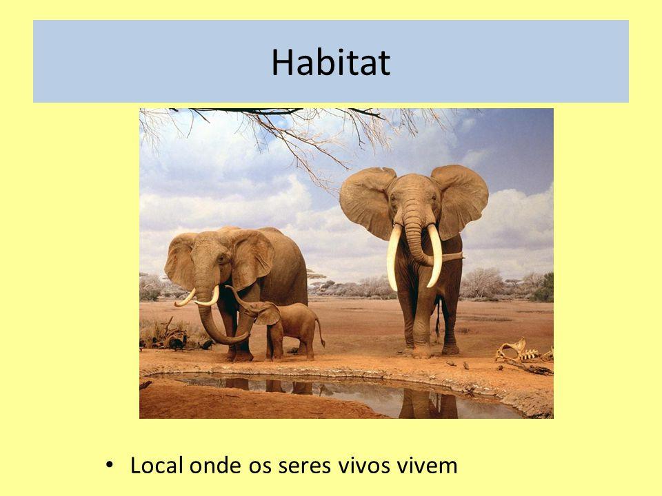 Habitat Local onde os seres vivos vivem