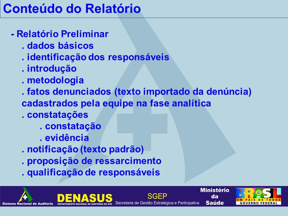 Conteúdo do Relatório - Relatório Preliminar. dados básicos. identificação dos responsáveis. introdução. metodologia. fatos denunciados (texto importa